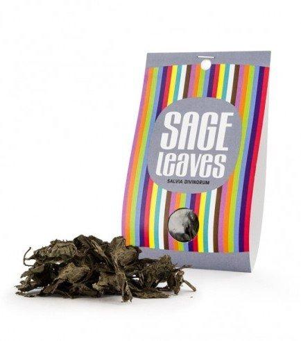 Foglie di Salvia Divinorum, 10 grams