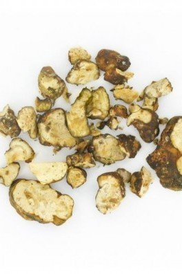 Psilocybe Hollandia (Magic Truffles)