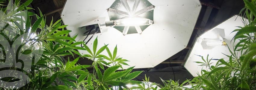 Illuminazione artificiale