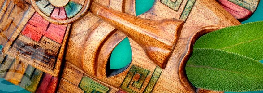 Salvia È Usato Nelle Cerimonie Indigene