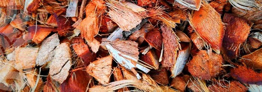 fibre fatti a pezzi e disidratati