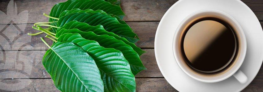 Caffè Al Kratom