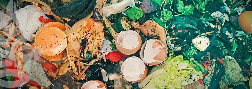 Come Fare Un Cumulo Di Compost