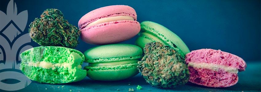 Come Devo Assumere La Marijuana Terapeutica?