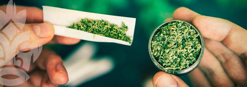 I Vantaggi Del Grinder Per La Cannabis