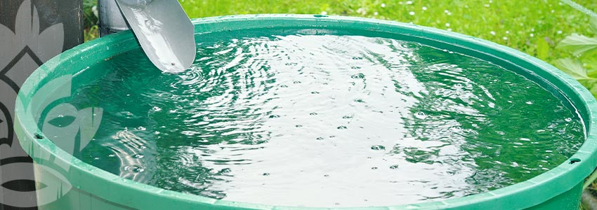 Usa L'acqua Piovana