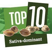Top 10 Sativa-dominante