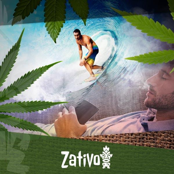 I diversi tipi di cannabis e i loro effetti zativo - Diversi tipi di figa ...
