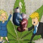 Elezioni Presidenziali USA: I 7 Candidati e le loro Posizioni sulla Cannabis