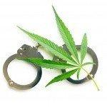 8 Ragioni per cui la gente viene beccata a coltivare Cannabis