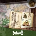 Le Origini e la Storia della Cannabis