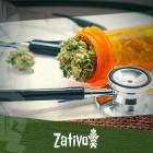 Comprendere La Marijuana Terapeutica