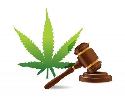Richiesta al Governo Britannico la Regolarizzazione della Cannabis