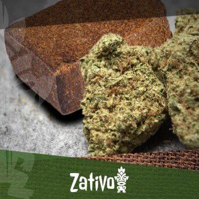 Differenza tra Marijuana ed Hashish
