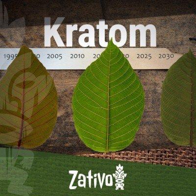 La Storia del Kratom