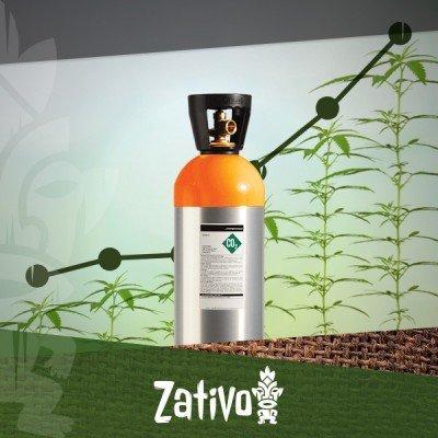 Aggiungete CO2 Alla Vostra Grow Room E Aumentate Le Rese