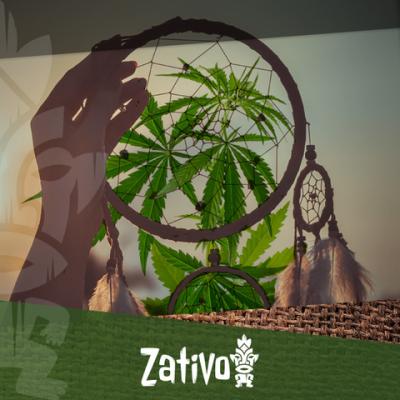 Come Interferisce la Cannabis sul Nostro Sonno?