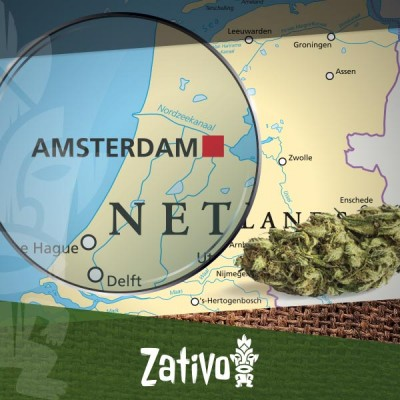 Coffee Shop Di Amsterdam: Consigli Per I Nuovi Visitatori