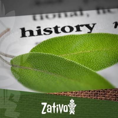 La Storia Della Salvia