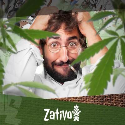 Top 7 Delle Migliori Varietà Di Cannabis Contro Lo Stress