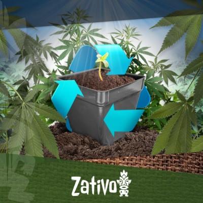 Riciclare Il Terreno Di Coltivazione Della Cannabis