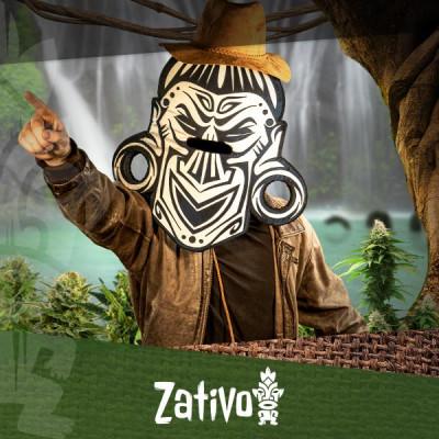 Trova la Tua Varietà di Cannabis Preferita con il Seedfinder